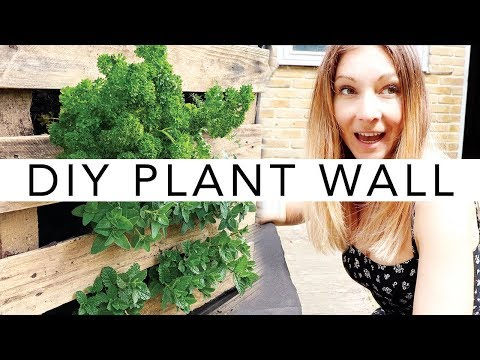 DIY Vertical Wall Garden   BEAUTIFUL PLANT WALL FOR YOUR BALCONY