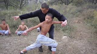Shaolin Xinyiba - Traditional Xiao Hong Quan & Gongfa (skill methods) tutorial