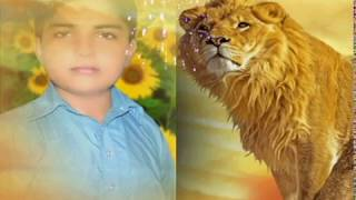 Zindabad nawaz sharif song pml n 5