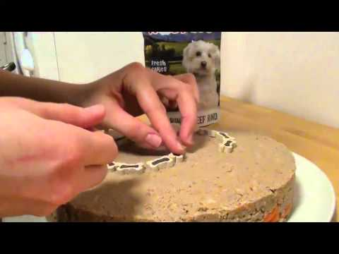 How to make a cake for dogs (easy)