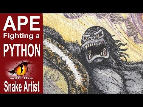 Snake Artist E03- Ape Fighting a Python