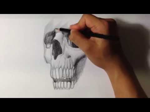How to Draw Realistic Skull Tattoo - Skull Drawings