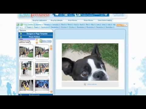 PHOTO CALENDARS by Lifephoto  new video on how to make a 2012 Photo Wall Calendar