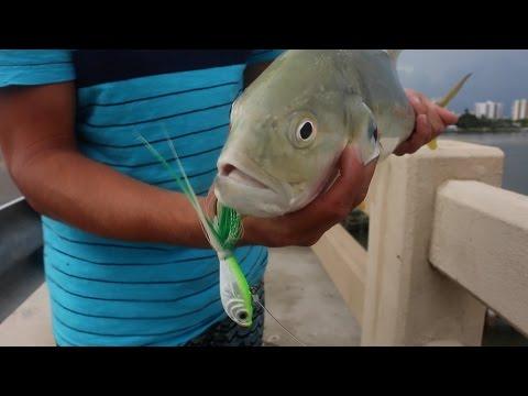 DESTINATION: Florida  - Tx Connection Shark Fishing Trip  - Summer 2015