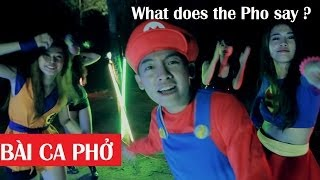 What Does The Pho Saythe Fox Vietnamese Parody Bai Ca Pho Clip Hai Hu