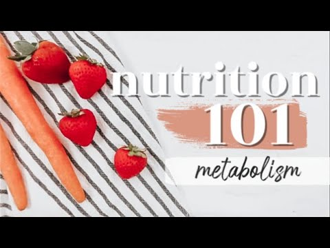 METABOLISM: THE BASICS | Nutrition 101 Ep. 10
