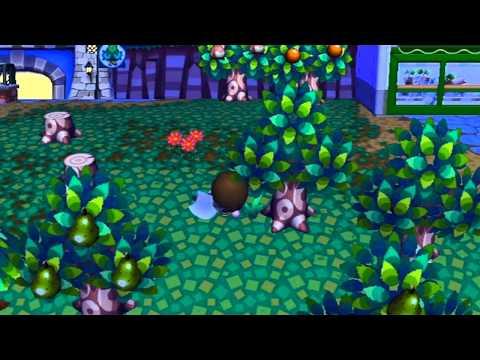 Lets Play Animal Crossing City Folk Day 35: Super Zero