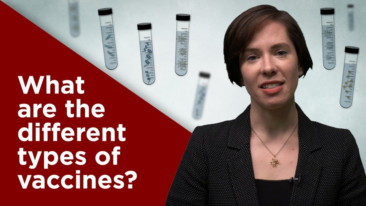 What are the different types of vaccines?