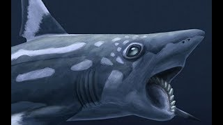 Paleo Profile - Bunch of Prehistoric Fish