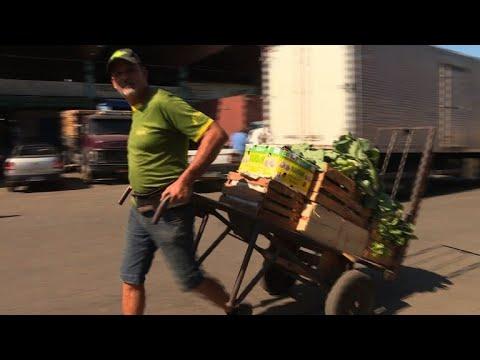 Supermarkets are once again full as Brazil mega-strike eases