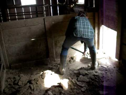 cleaning pig pens