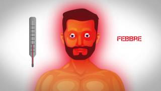 Corpo Umano 09 - Il Sistema Immunitario