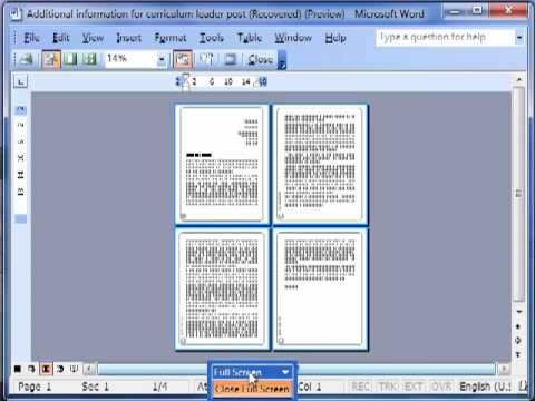 Word 3623 Print Preview in Microsoft Word 2003 ECDL ITQ2