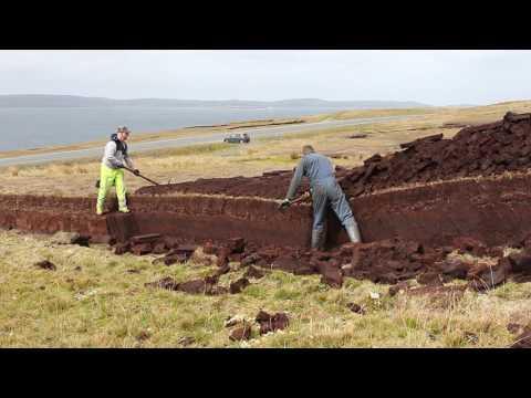 Cutting peats on Shetland.