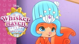 The Fancy Fur Ball | Whisker Haven Tales with the Palace Pets | Disney Junior
