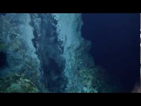 Blind Shrimp Swarming a Vent - E/V Nautilus Explorer Video Bite - Mid-Cayman Rise 2013