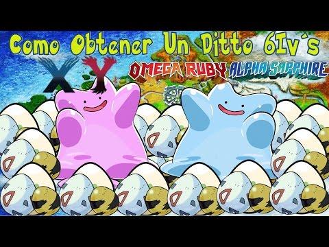 Como Obténer Un Ditto 6 IV´s Para Criar Pokés Competitivos/Pokémon XY-ORAS