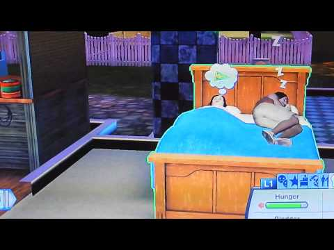 Bedtime Sims 3 Pets Glitch