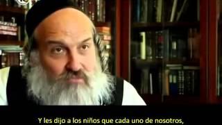 Los ultra ortodoxos judíos – Segundo capítulo 54f058374cd