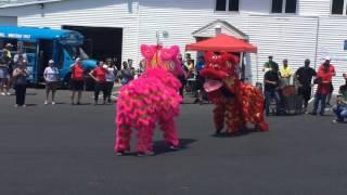 5th annual Springfield Dragon Boat Festival