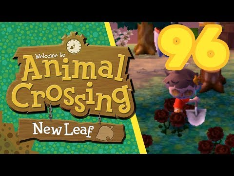 Black Roses! - Day 96 - Animal Crossing: New Leaf