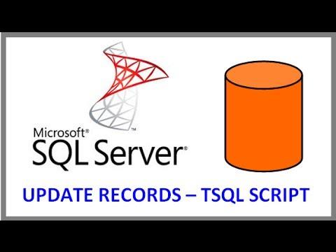 SQL Server -- UPDATE RECORDS IN TABLE VIA TSQL SCRIPT