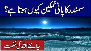 Why Sea Water Salty | Samundar Ka Pani Namkeen Kyun Hota Hai | Rohail Voice