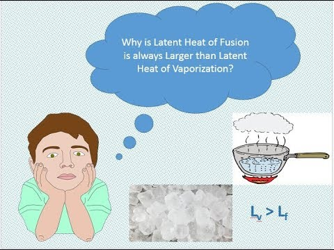 Why is Latent heat of vaporization always larger than Latent heat of fusion?