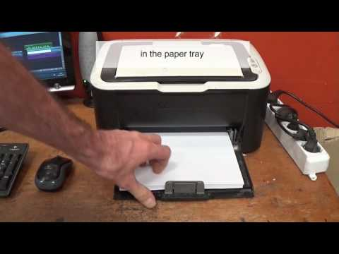 EPSON Paper feed or paper jam problem multiple output repair