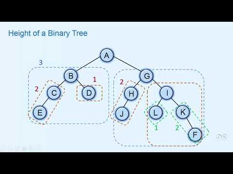 013 Finding height of a Binary tree