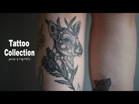 My Tattoo Collection | Meaning, Pain & Regrets