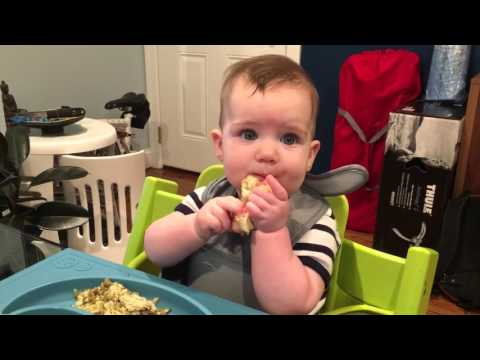Baby led weaning - 6 month old eating cauliflower for the first time