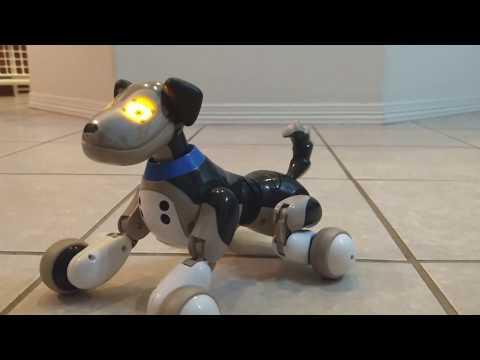 Zoomer's Robot Puppy - Like a Real Puppy!