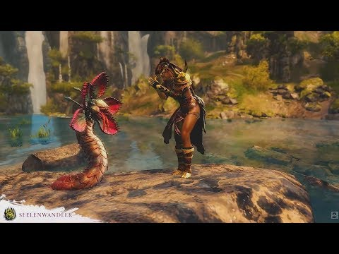 Guild Wars 2 Path of Fire - Seelenwandler mit Sputti nach der Beta