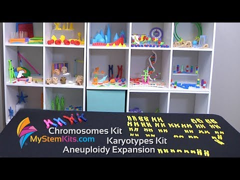 Chromosomes Kit; Karyotypes Kit & Aneuploidy Expansion