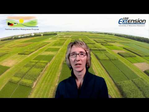 Fundamental Soil Fertility Strategies for Success, in Corn, Soybean, and Small Grains