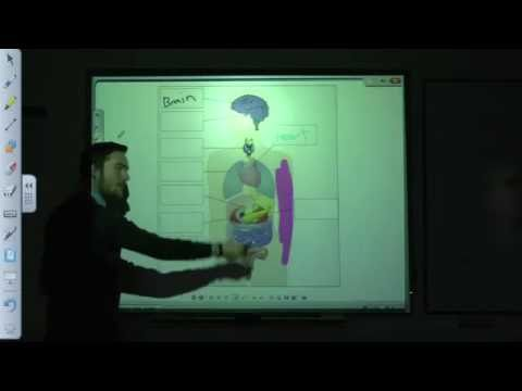 Interacting with a SMART Board - Part 1