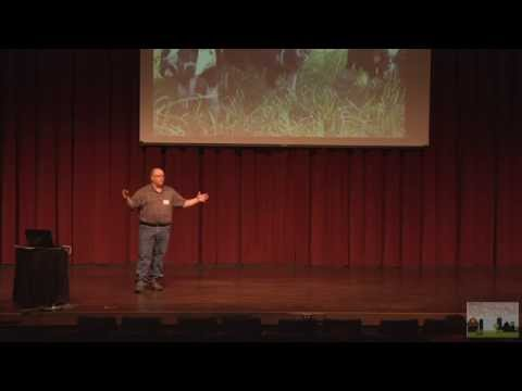 Keys To Building a Healthy Soil - Organic - Permaculture and Polyculture
