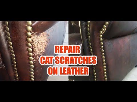 Cat Scratches Leather Sofa Repair  (Quick & Easy)