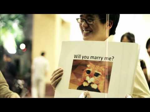 Meme Proposal   Tim * Audrey (From Vimeo)