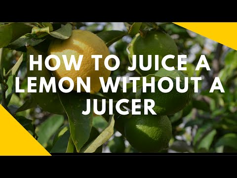 How to Juice a Lemon or Lime Without a Juicer - (Works 100%)
