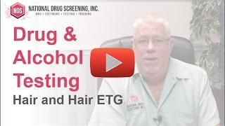 Drug Alcohol Testing Hair And Hair Etg
