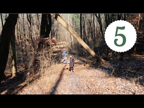 HIKING & CHRISTMAS MOVIES | 12 Days of Vlogmas Day 5