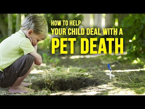 3 Ways To Help Your Child Cope After A Pet Dies