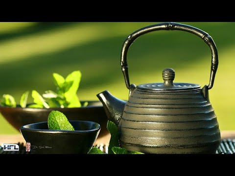 How To Use Green Tea To Boost Your Metabolism and Lose Weight?