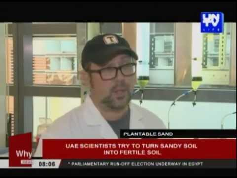 UAE scientists try to turn sandy soil into fertile soil
