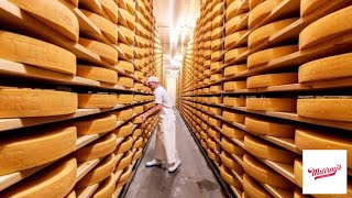 How Swiss Gruyere Cheese Is Made | How It's Made | Murray's Cheese