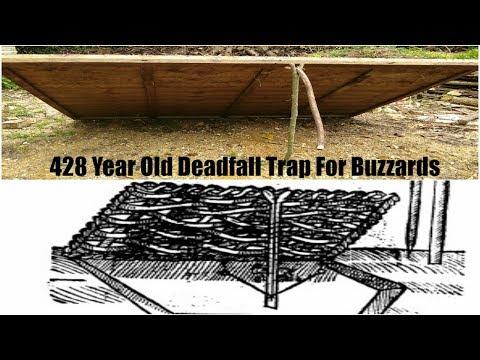Deadfall Trap For Buzzards & Kites (Mascalls other traps)