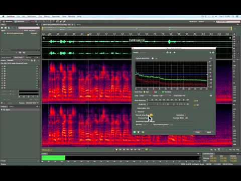 Cleaning up audio in Adobe Audition