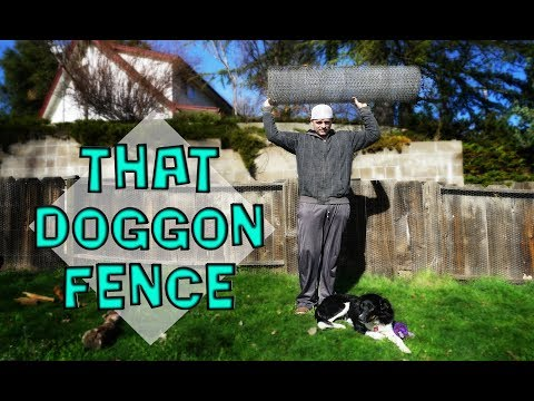 Fixing | Repairing the Fence from Dogs escape